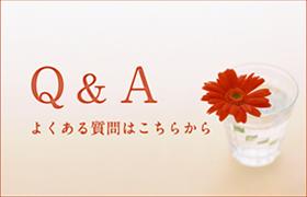 Q&A:よくある質問はこちらから